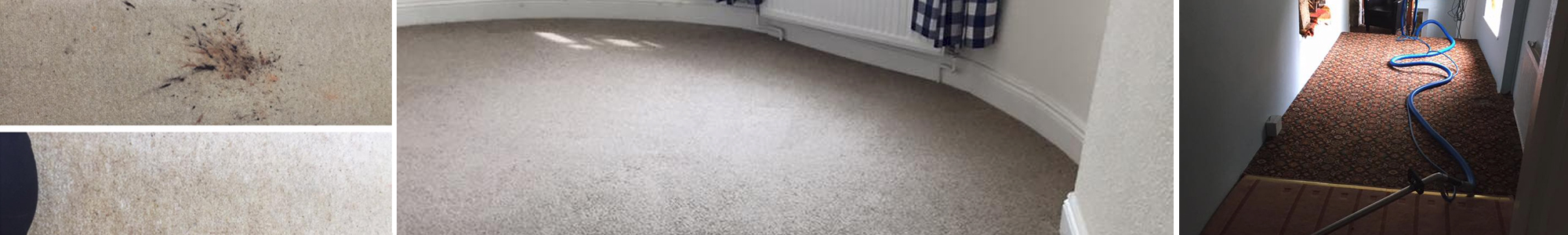 Carpet Cleaners Exeter