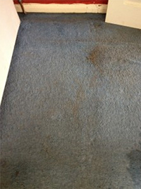 Exeter Cleaners Carpets